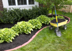 mulch services