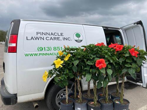 Seasonal annuals in front of pinnacle van