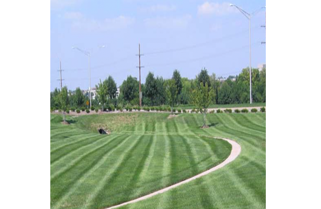 lawn and maintenance featured image