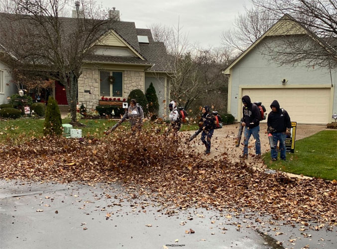 lawn maintenance fall cleanup